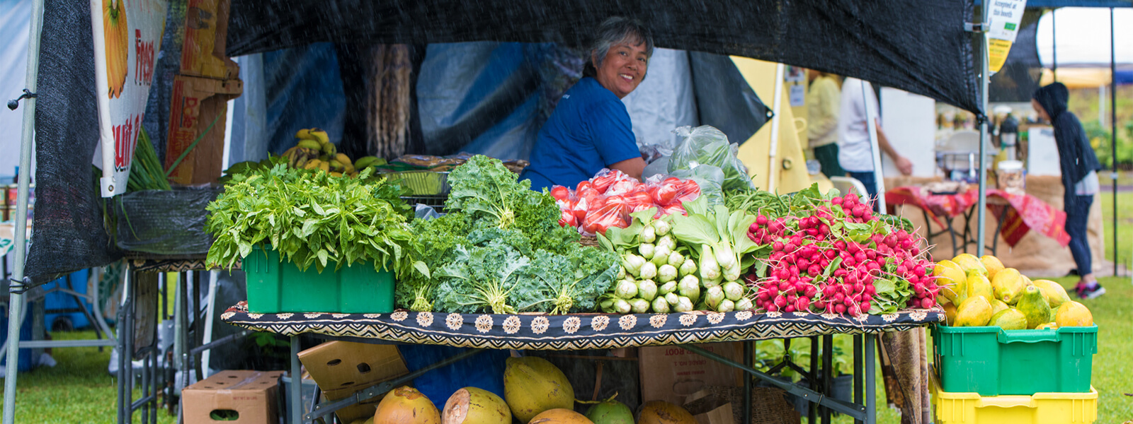 Outdoor vegetable stand at Western Week Event in Honokaa